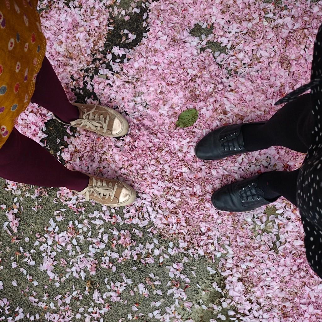 Foto: Anni Wallenius, Helsingfors.